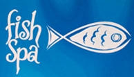 fish spa 2